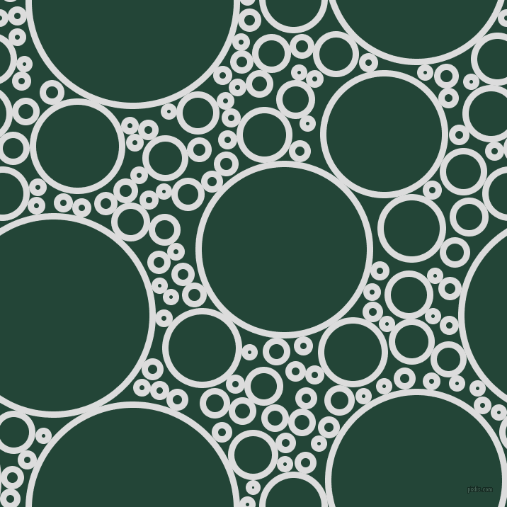 bubbles, circles, sponge, big, medium, small, 9 pixel line width, Gainsboro and Burnham circles bubbles sponge soap seamless tileable