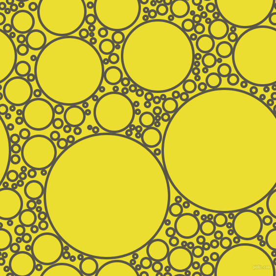 bubbles, circles, sponge, big, medium, small, 5 pixel line width, Millbrook and Golden Fizz circles bubbles sponge soap seamless tileable