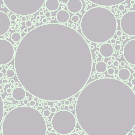 bubbles, circles, sponge, big, medium, small, 5 pixel line width, Tara and French Grey circles bubbles sponge soap seamless tileable