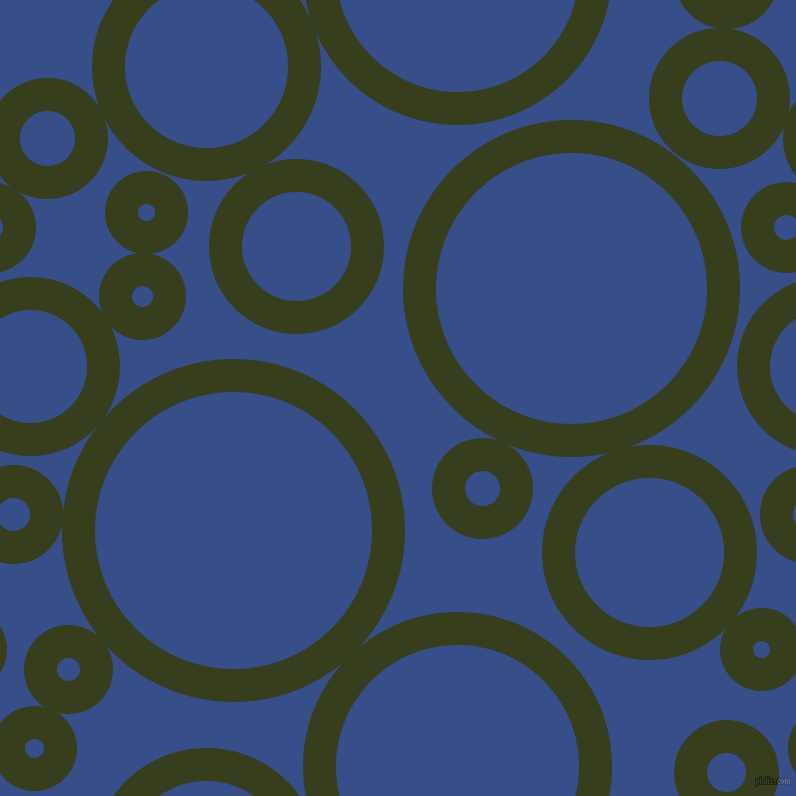Turtle Green And Tory Blue Circles Bubbles Sponge Soap