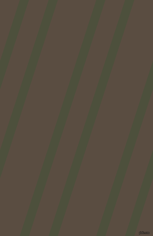 72 degree angles dual stripe lines, 30 pixel lines width, 64 and 125 pixels line spacing, dual two line striped seamless tileable