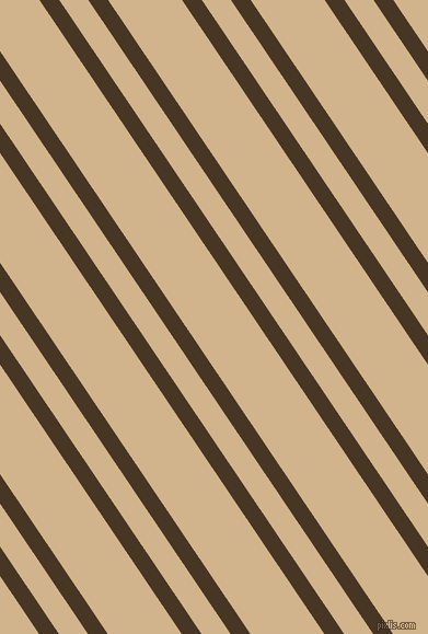 124 degree angles dual stripe lines, 15 pixel lines width, 22 and 56 pixels line spacing, Clinker and Tan dual two line striped seamless tileable