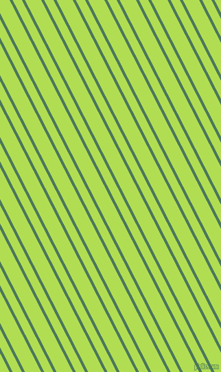 117 degree angle dual striped lines, 4 pixel lines width, 12 and 21 pixel line spacing, Como and Conifer dual two line striped seamless tileable