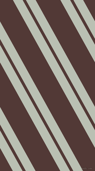 119 degree angle dual striped lines, 30 pixel lines width, 10 and 76 pixel line spacing, Tasman and Van Cleef dual two line striped seamless tileable