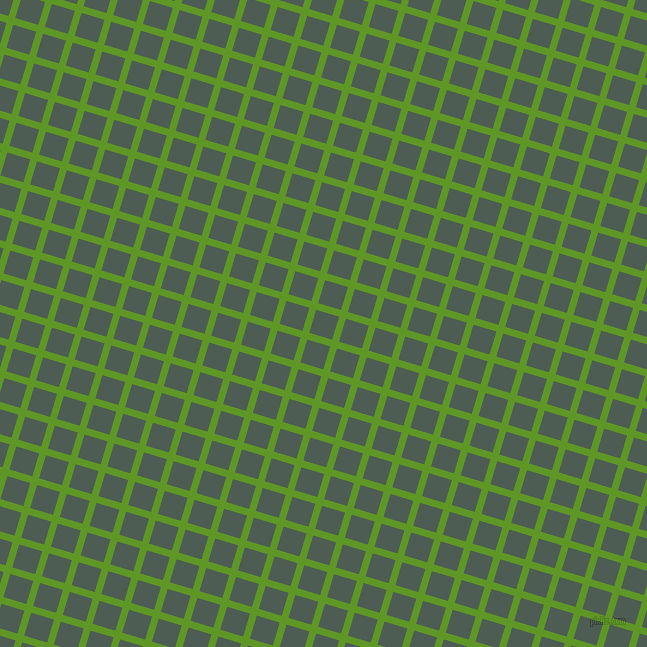73/163 degree angle diagonal checkered chequered lines, 7 pixel line width, 24 pixel square size, Limeade and Feldgrau plaid checkered seamless tileable