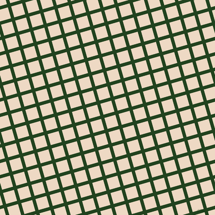 16/106 degree angle diagonal checkered chequered lines, 11 pixel line width, 37 pixel square size, Myrtle and Almond plaid checkered seamless tileable